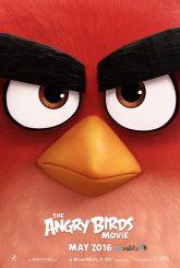 دانلود-انیمیشن-پرندگان-خشمگین