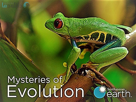 کاور-Mysteries-of-Evolution