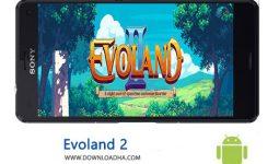 کاور-Evoland-2