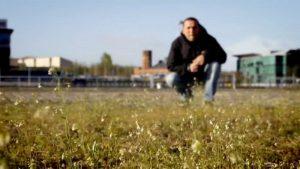 اسکرین-شات-The-Wonder-of-Weeds