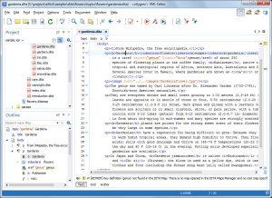 اسکرین-شات-XML-Editor