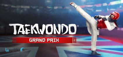 دانلود-بازی-Taekwondo-Grand-Prix