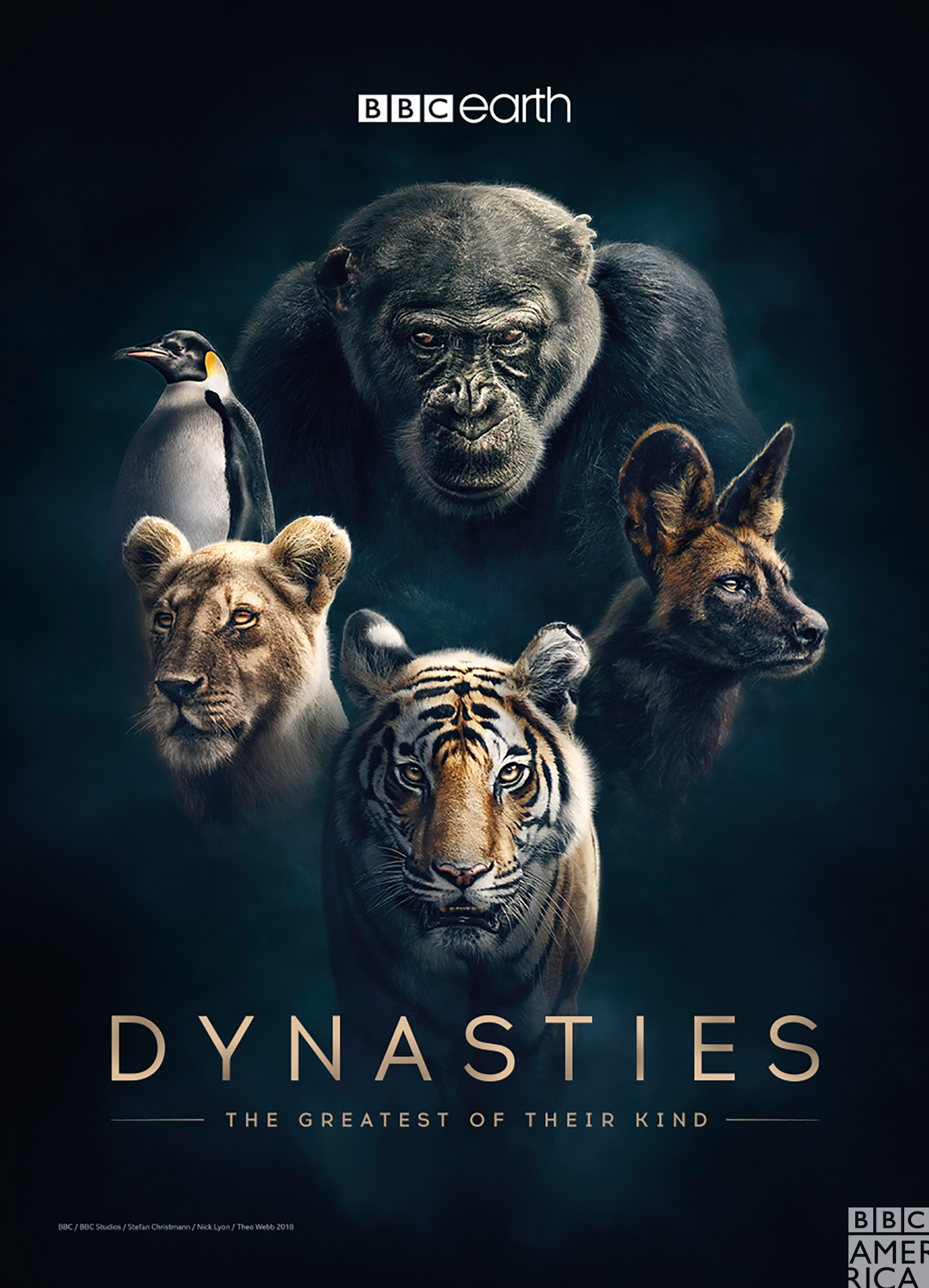 https://img5.downloadha.com/hosein/files/2018/11/Dynasties-2018-Cover-Large.jpg