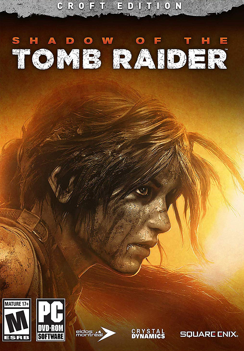 https://img5.downloadha.com/hosein/files/2018/11/Shadow-of-the-Tomb-Raider-pc-cover-large.jpg