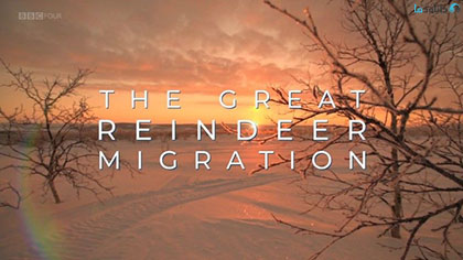 دانلود-مستند-All-Aboard-The-Great-Reindeer-Migration-2018