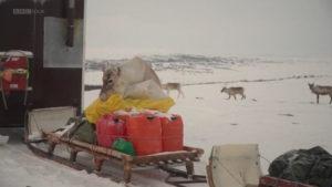 اسکرین-شات-All-Aboard-The-Great-Reindeer-Migration