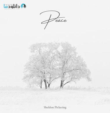 البوم-موسیقی-peace-music-album