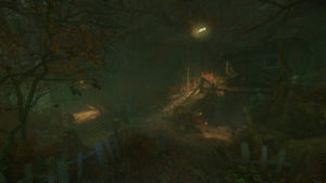 لقطة من الغابة الملعونة
