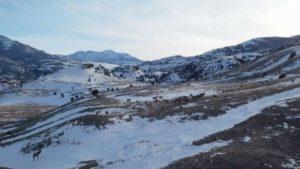 اسکرین-شات-Yellowstone-Wolves