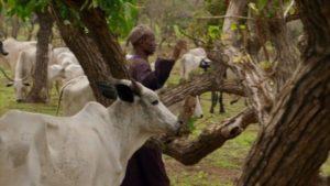 اسکرین-شات-Africa-with-Ade