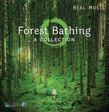 البوم-موسیقی-forest-bathing-music-album