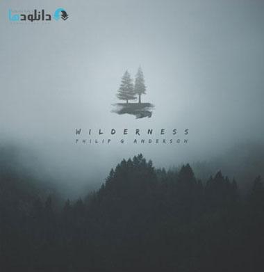 البوم-موسیقی-wilderness-music-album