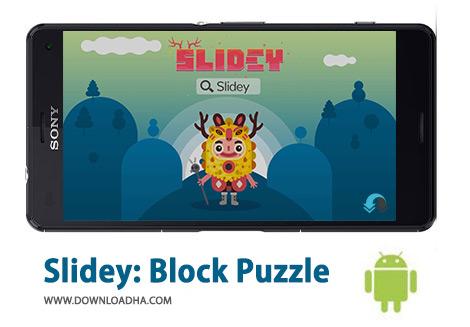 کاور-Slidey-Block-Puzzle