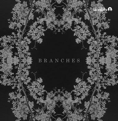 البوم-موسیقی-Branches-Music-Album