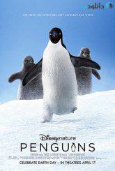 کاور-Penguins-2019