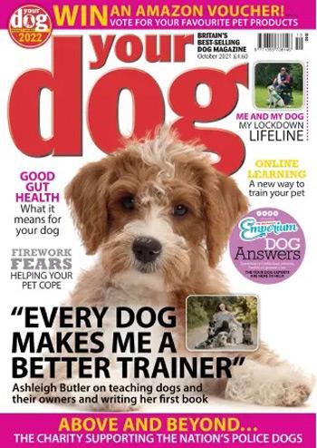 مجله-Your-Dog